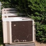 overgrown-bushes around ac unit
